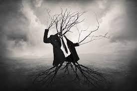 جای مردان سیاست بنشانید درخت-ن. نوری زاده